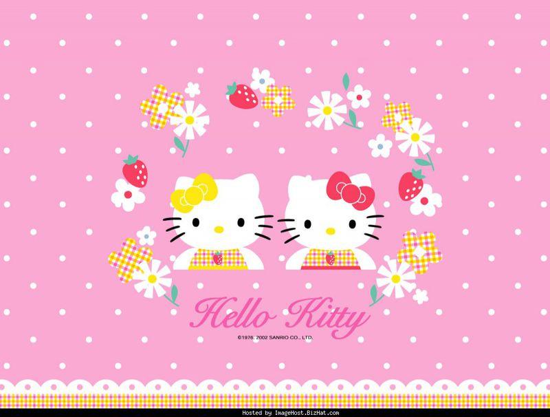 HELLO KITTY (22).jpg